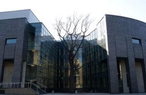 """1024px-Jagiellonian_University_Auditorium_Maximum_(east_elevation)_and_oak_""""Franciszek"""",_33_Krupnicza_street,Krakow,Poland"""
